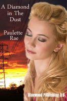 A Diamond in Dust by Paulette Rae